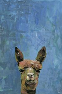 Marmont Hill What up Llama 45-inch x 30-Inch Canvas Wall Art
