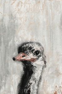 Marmont Hill Ostrich You Cute 30-Inch x 20-Inch Canvas Wall Art