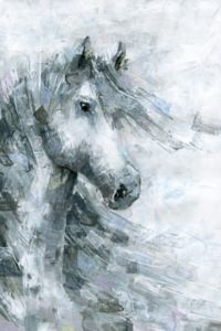 Marmont Hill Horse in the Wind 12-Inch x 18-Inch Canvas Wall Art