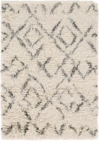 Surya Tasman 2' x 3' Shag Accent Rug in Cream/Dark Green