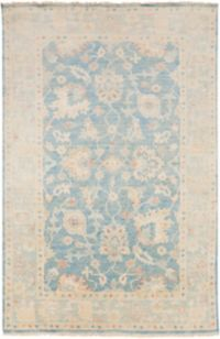 Surya Cheshire Classic 5'6 x 8'6 Indoor/Outdoor Area Rug in Aqua/Cream
