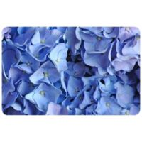 "FoFlor Hyde Park 23"" x 36"" Kitchen Mat in Blue"