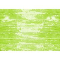 "FoFlor Painted Floor 46"" x 66"" Kitchen Mat in Green"
