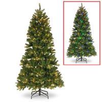 Winter Wonderland 7-Foot Pre-Lit Slim Newberry Spruce Christmas Tree
