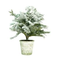 Northlight 20-Inch Flocked Pine Tree