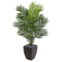 Nearly Natural 5.5-Foot Paradise Palm Tree in Black Planter
