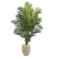 Nearly Natural 5.5-Foot Artificial Paradise Palm Tree in Planter