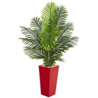 Nearly Natural 5-Foot Artificial Paradise Palm Tree in Red Planter