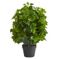Nearly Natural 2-Foot Ficus Artificial Tree