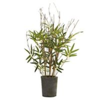 Nearly Natural 27-Inch Artificial Bamboo Tree with Cement Pot