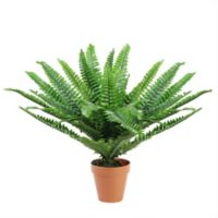 Northlight 18.5-Inch Potted Boston Fern Artificial Plant