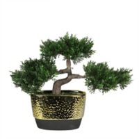 Northlight 10-Inch Japanese Bonsai Tree in Ceramic Planter