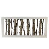 Northlight 18.75-Inch Framed Mixed Branches Table Top Decoration
