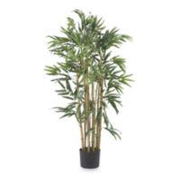 Natural 3-Foot Multi-Bambusa Bamboo Silk Tree