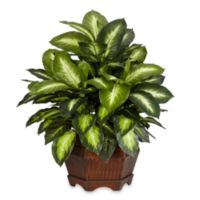 Nearly Natural 20.5-Inch Golden Dieffenbachia Silk Plant