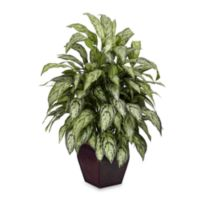 Nearly Natural 38-Inch Silk Silver Queen Plant w/Decorative Planter