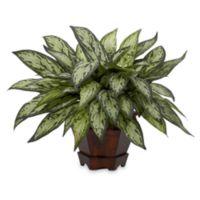 Nearly Natural 14-Inch Silk Triple Silver Queen Plant w/Hexagon Planter