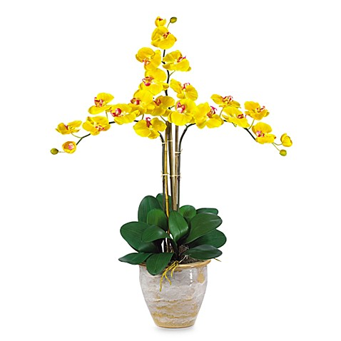 Nearly Natural Triple Phalaenopsis Orchid Silk Flower Arrangement in Gold  Bed Bath \u0026 Beyond
