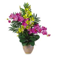 Nearly Natural Double Phalaenopsis & Dendrobium Silk Flower Arrangement in Orchid & Green