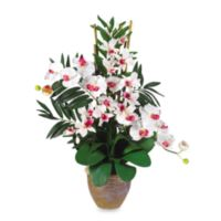 Nearly Natural 29-Inch Double Phalaenopsis & Dendrobium Silk Flower Arrangement in White