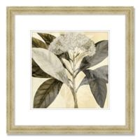 From Nature I 22.5-Inch Square Framed Wall Art