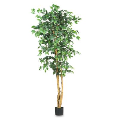 Artificial Trees From Bed Bath Beyond