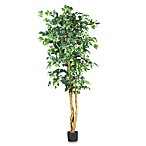 Nearly Natural 6-Foot Ficus Silk Tree