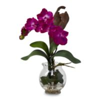 Mini Vanda with Fluted Vase Silk Flower Arrangement - Beauty