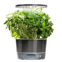 AeroGarden® Harvest Elite 360 Garden System in Platinum