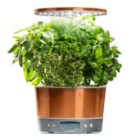 AeroGarden® Harvest Elite 360 Garden System in Copper