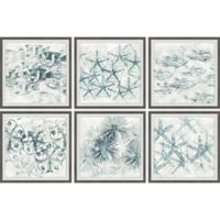 Marmont Hill Stars of the Sea 72-Inch x 48-Inch Framed Hexaptych Wall Art