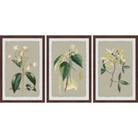 Marmont Hill Tiny Blooms 36-Inch x 18-Inch Framed Triptych Wall Art