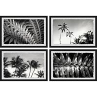 Marmont Hill Palm Trees 36-Inch x 24-Inch Framed Quadriptych Wall Art