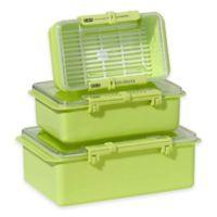 Oggi™ 3-Piece Snap N Seal Storage Set in Green