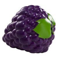 Hutzler® Snack Attach Grapes-to-Go in Purple