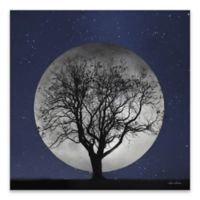 Full Moon Canvas 27-Inch Square Wall Art