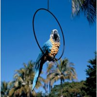 Design Toscano Polly in Paradise Large Parrot Sculpture