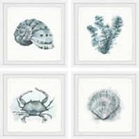 Marmont Hill Sea Life 24-Inch Square Framed Quadriptych Wall Art
