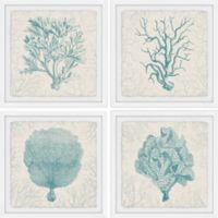 Marmont Hill Coral Group 36-Inch Square Framed Quadriptych Wall Art
