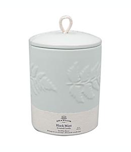 Vela en vaso Bee & Willow™ Home Spring Black Mint™ de 340.19 g