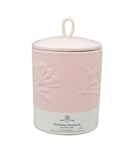 Vela en vaso Bee & Willow™ Home Spring Sardinian Rosemary™ de 340.19 g