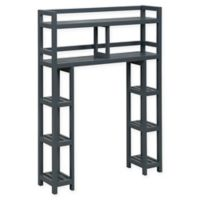 New Ridge Home Goods® Dunnsville 2-Tier Over the Toilet Space Saver in Graphite