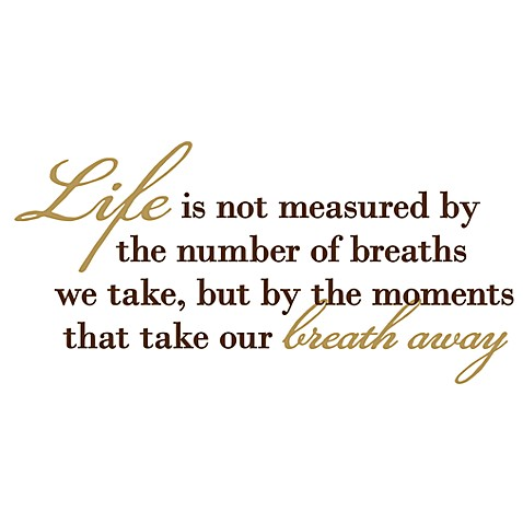 Life Is Not Measured By The Number Of Breaths We Take Vinyl Wall - Vinyl wall decals bed bath and beyond