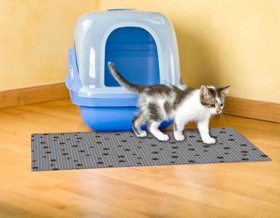 drymate large cat litter box mat with black paw print