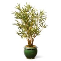 National Tree Company® 22-Inch Garden Accents Bamboo Artificial Plant