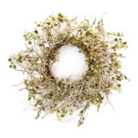 Melrose International 20-Inch Artificial Birch Branch Wreath in Ivory/Olive