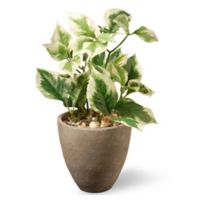 National Tree Company® 12-Inch Artificial Pothos Plant with Grey Pot