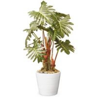 "National Tree Company® 21"" Artificial Philodendron Tree with White Planter"