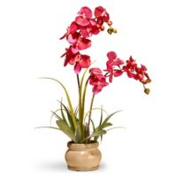 "National Tree Company® 22.5"" Artificial Orchid in Pink with Ceramic Pot"