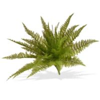"National Tree Company® 21"" Artificial Garden Accents Ruffle Fern Plant in Green"
